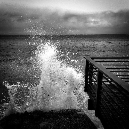 bw pugetsound splash vashonisland iphone tonality iphoneography macphun