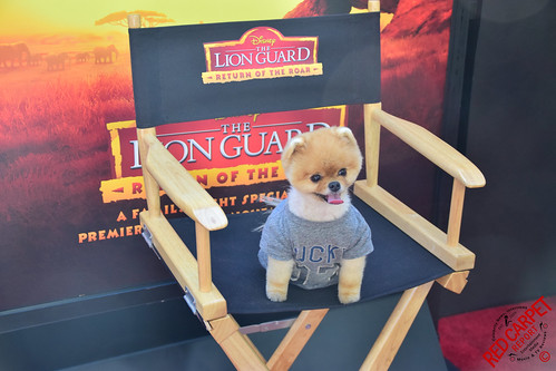 Jiff Pom at the Premiere of Disney's