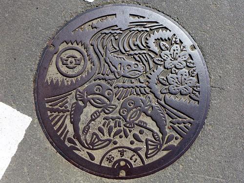 Hiromi Ehime, manhole cover 4 (愛媛県広見町のマンホール4)