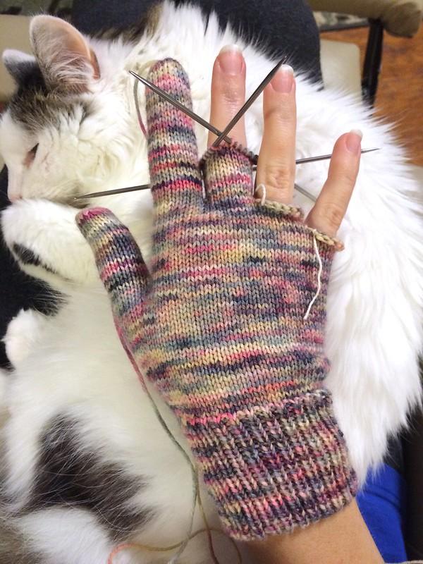 Gloves in Progress