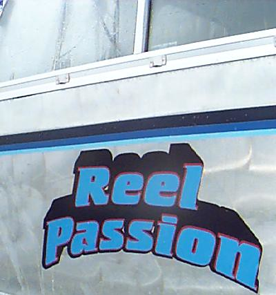 reelpassion1 vehicle graphics