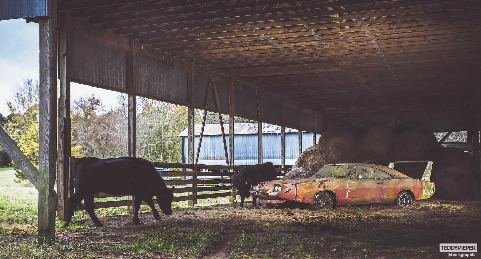 1969 Dodge Daytona Charger Barn Find Alabama Photos
