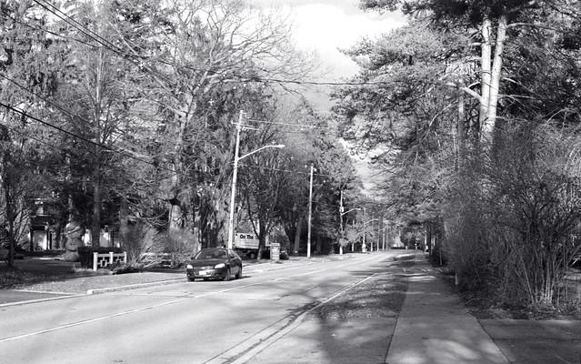 MacDonald Ave