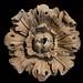 Flores de piedra, Stone flowers by diocrio