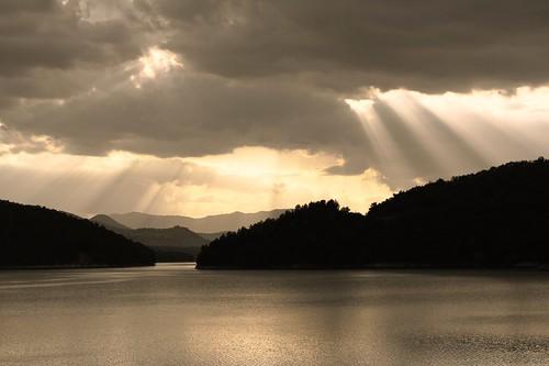 Rays rain