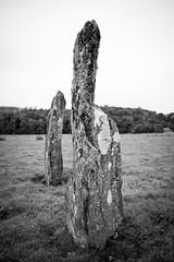 Nether Largie Stones, Kilmartin Glen-5