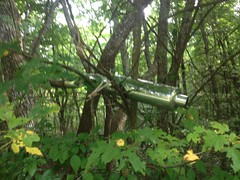 Muffler in a Tree