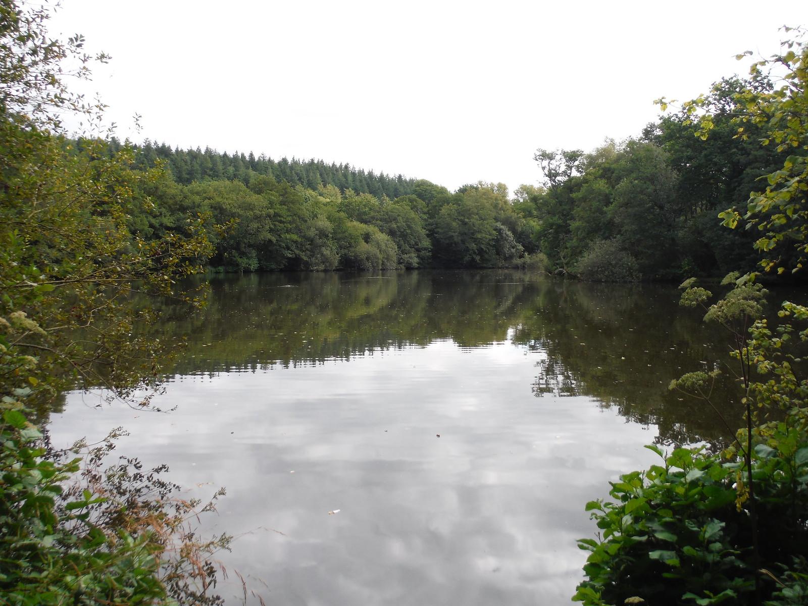 Pale Park Pond, Wardour Park SWC Walk 251 Tisbury Circular via Ludwell and Berwick St. John