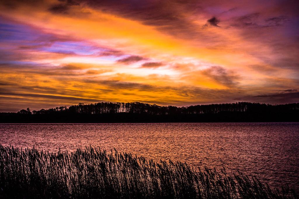 Sonnenaufgang an der Schlei  (1 von 1)