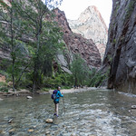 Beginning of the Narrows hike, Zion