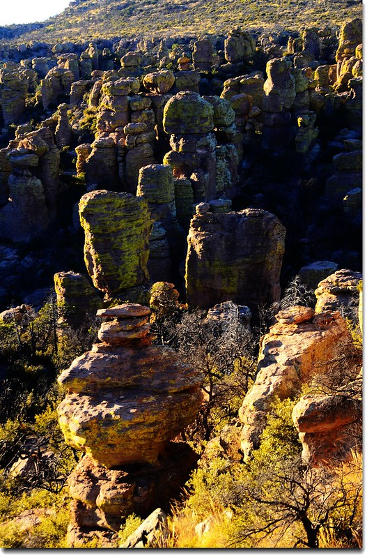 Chiricahua National Monument, AZ (16)