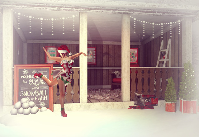 Santas Lil Helper_001