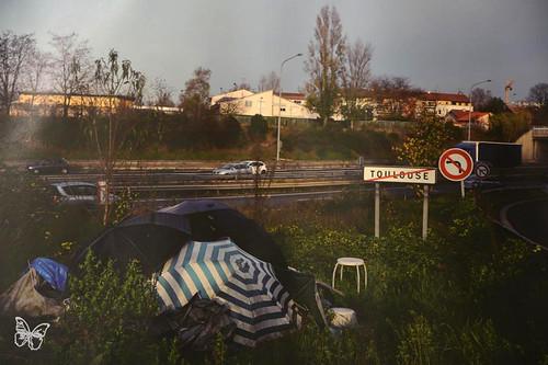 Creve Hivernale - Toulouse