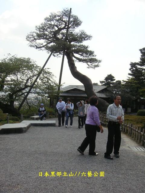 日本黑部立山01 (369), Sony DSC-T77