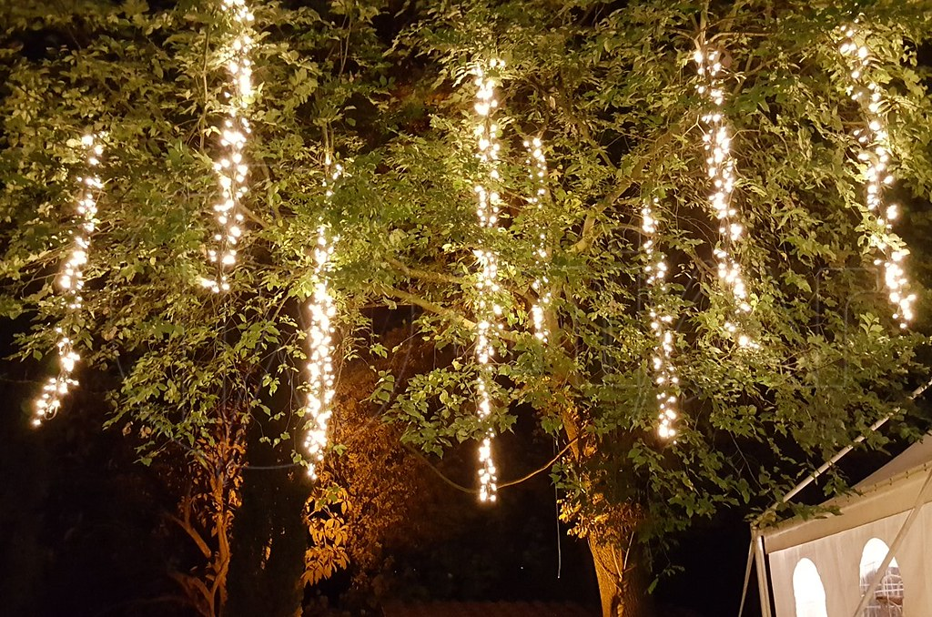 Fairy lights noleggio catering gazebo e luci wedding for How to hang string lights without trees