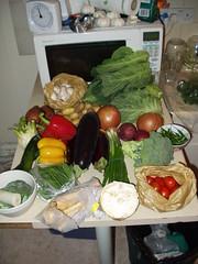 A vegetable haul