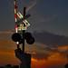 Small photo of La Plata Sunset