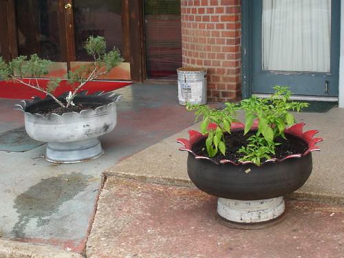 Tire planters in Amite, LA