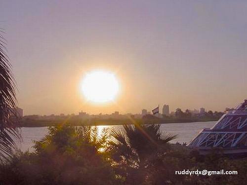 sun sol egypt palmtrees cairo maadi elmaadi cairosunset hugefireball caireneevening