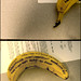 the banana of who you last talked to on the phone before leroy by twintermute