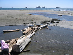 Beach @ Crescent City