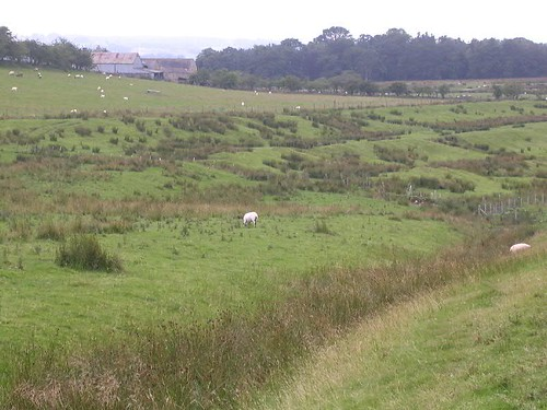 The Turf Wall and ditch (foreground) with the Vallum (beyond)