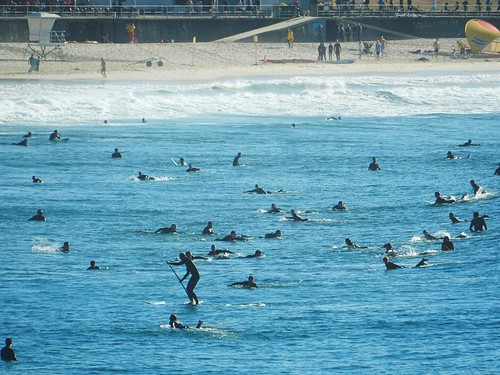 Surfers in Bondi beach