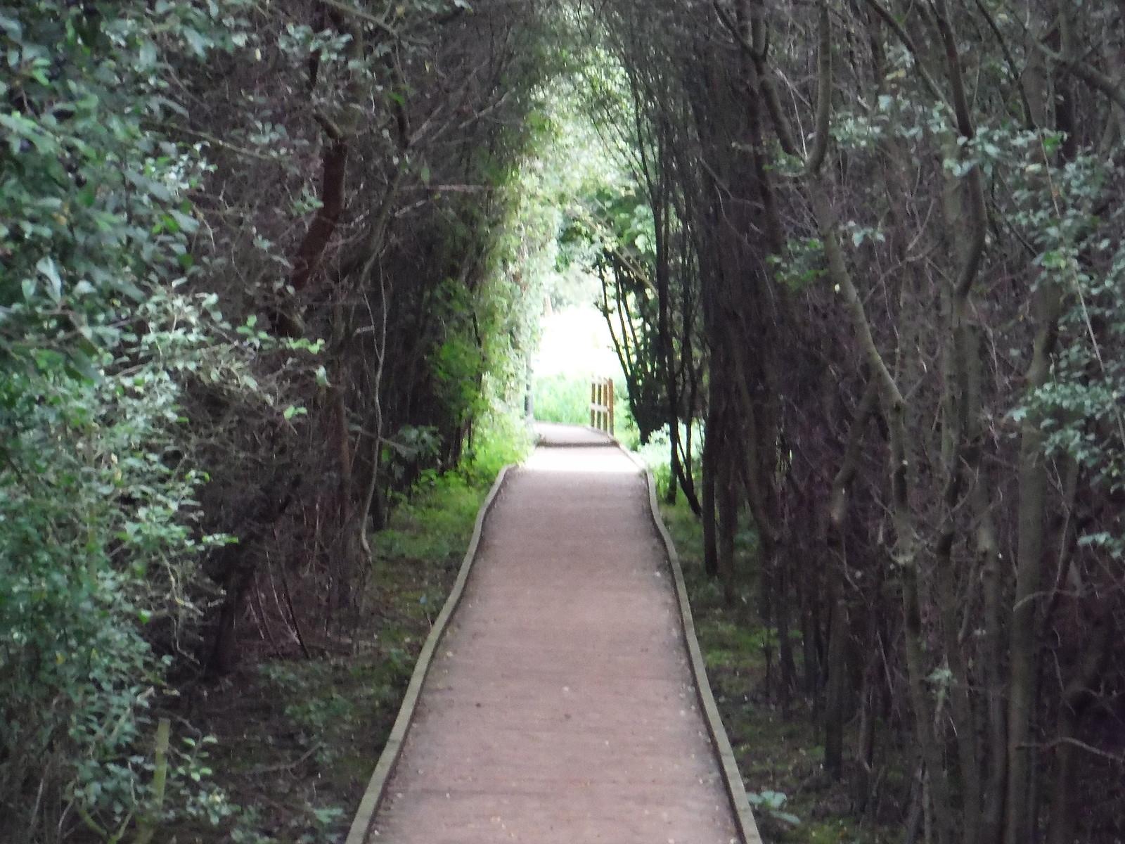 From Pishiobury Park to the Stort Navigation SWC Walk 164 Roydon to Sawbridgeworth via Henry Moore Foundation