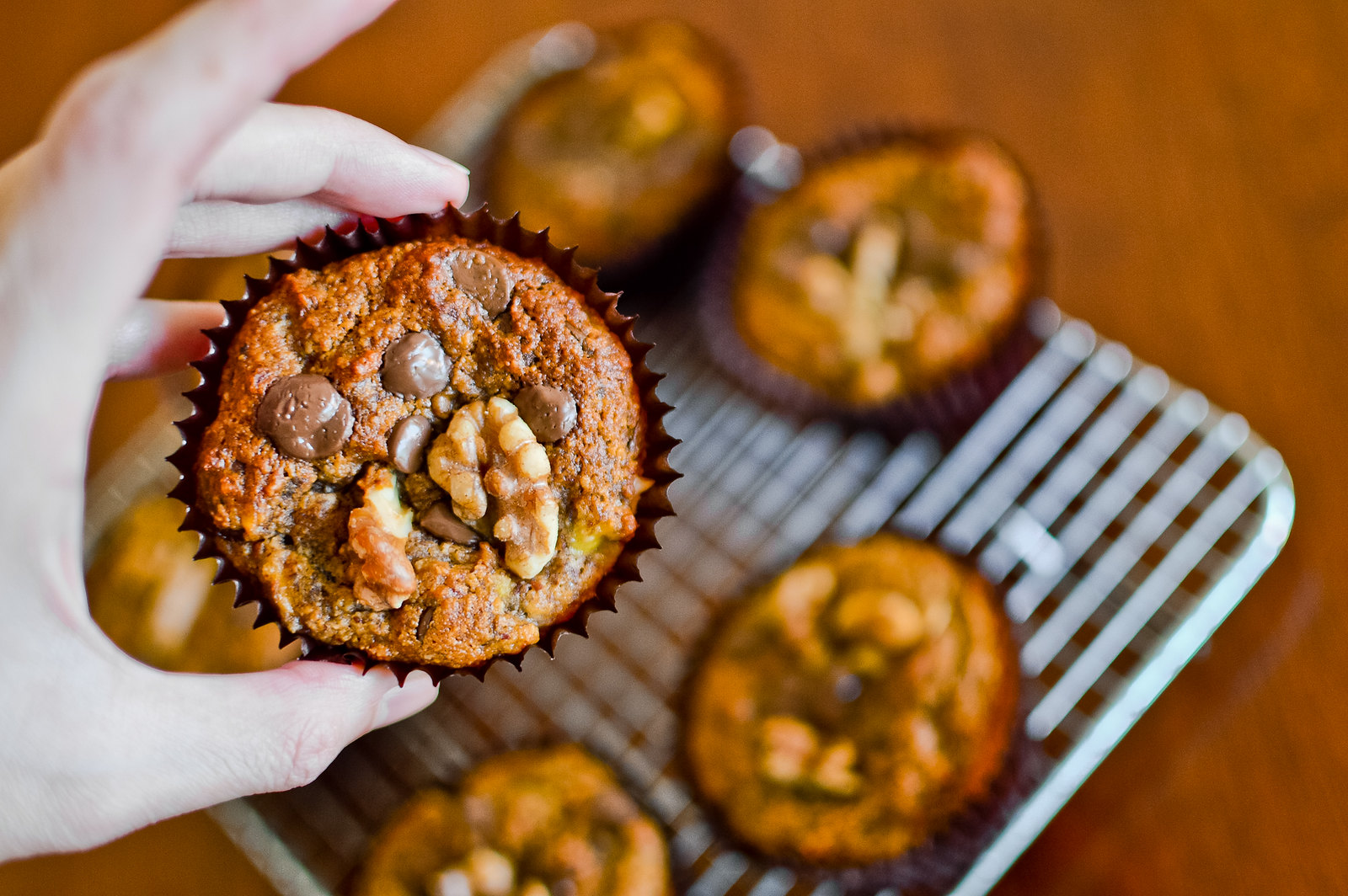 Chocolate Chip Banana Walnut Muffins