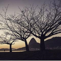 O Rio em mais um lindo click de Thiago Lontra... #AplausoBlogAuroradeCinema #BlogAuroradeCinemadeclaraAmoraoRio #Rio #Rio450 #errejota #riodejaneiro #click #photographer #cidadelinda #cidademaravilhosa #iloverio #poesiadaimagem #rioeuteamo #carioca #cario