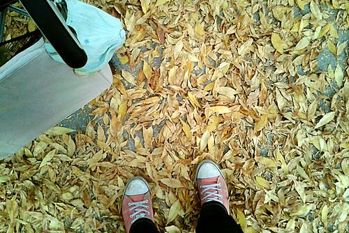29. Походить и поваляться в осенней листве