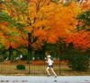 running_colors