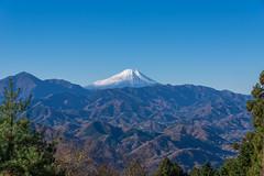 城山から仰ぐ富士山