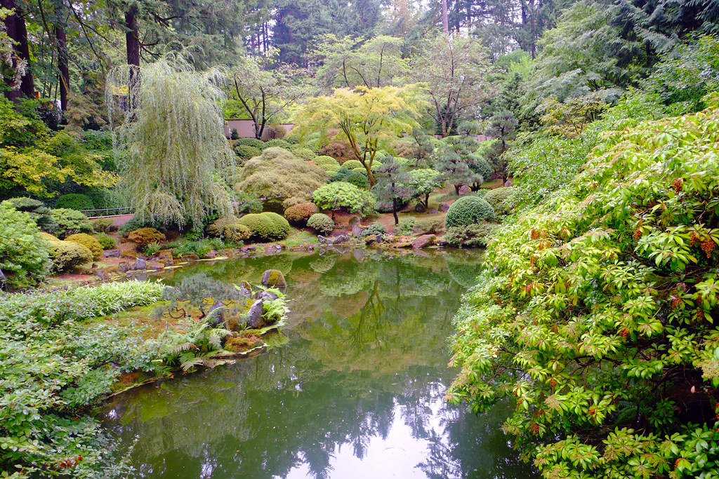 Pond at Japanese Gardens