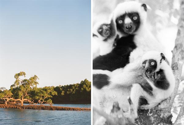 RYALE_Madagascar_Blog3_033