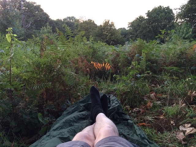 Cobham wood micro adventure - sleeping out beneath the stars