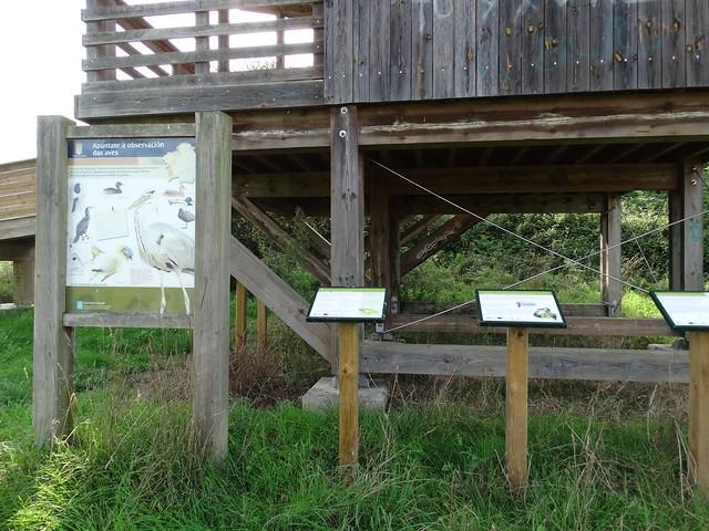 Ruta Ornitológica - Ruta del Bosque Animado