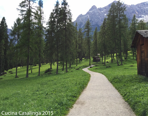 Bad Moos Fischleintal - Weg 3