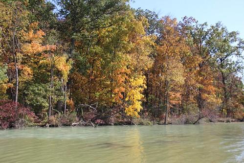 IMG_6495_Fall_Foliage