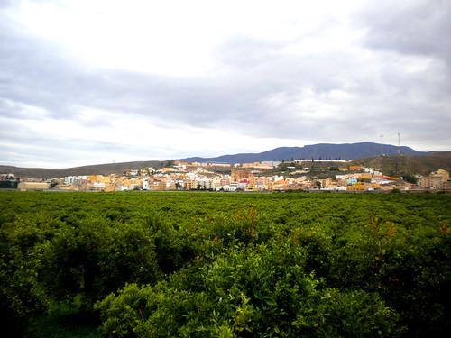 DINAMIZACIÓN CAMINO MOZARABE DE SANTIAGO, ETAPA GADOR ALBOLODUY