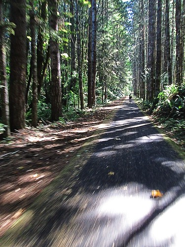 Sun on the return, Banks-Vernonia Trail