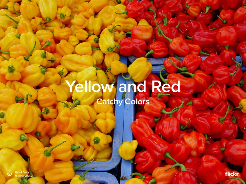 Catchy Colors: Yellow and Red