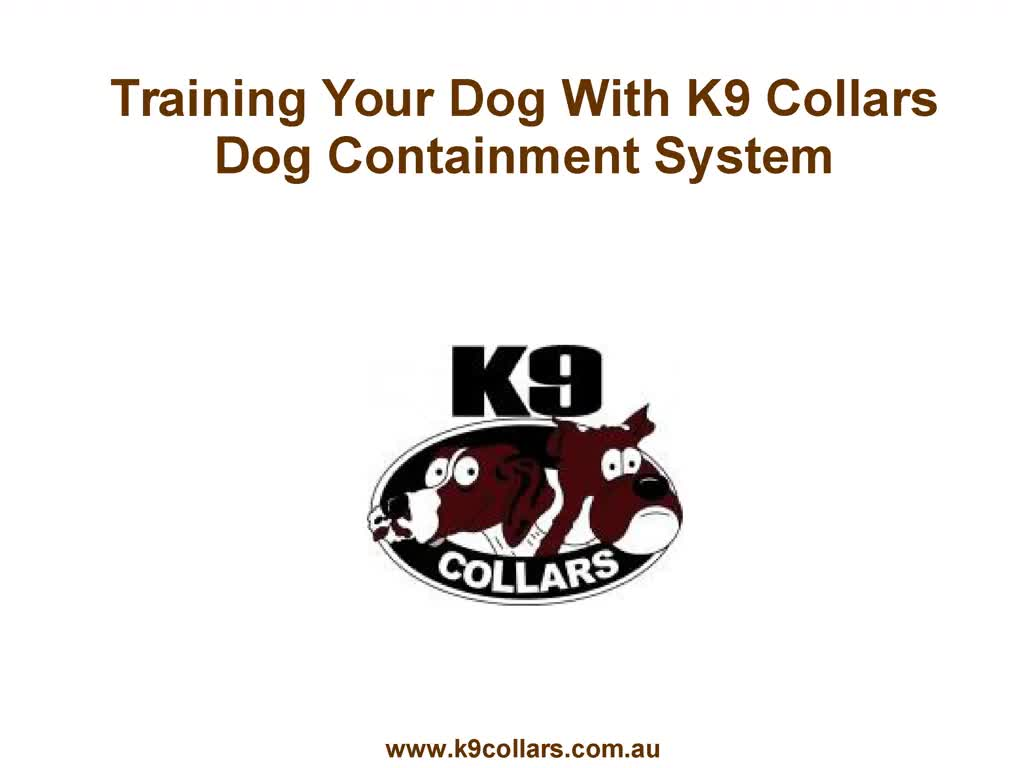 Training Your Dog With K9 Collars Dog Containment System