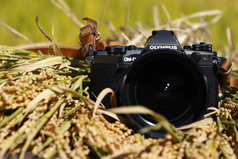 【Lens】Olympus M.ZD 7-14mm f/2.8 PRO 開箱開到九州去,完