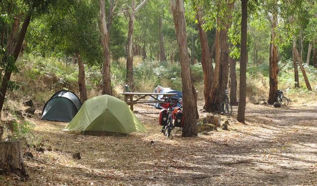 Mt Eccles campsite