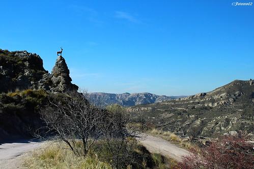 La Estatua y el Valle del Rio Aguas Blancas