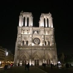 Notre dame de #Paris by Night #igersfrance