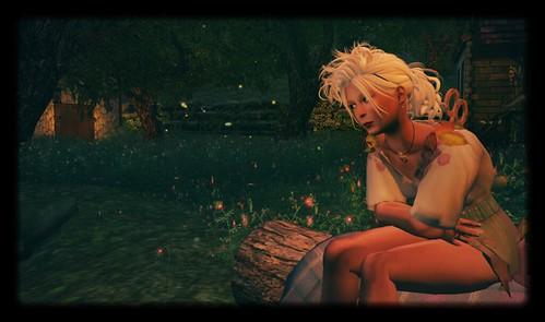Night on the log