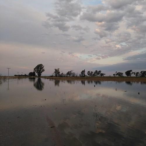 Después de la lluvia IV