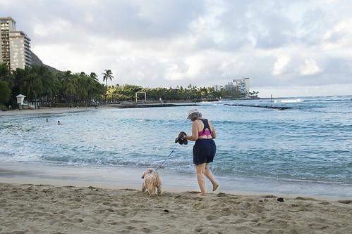JJ C9 02 012 Waikiki Oahu Hawaii / OLYMPUS EP3 × DG SUMMILUX 25mm F1.4 ASPH.